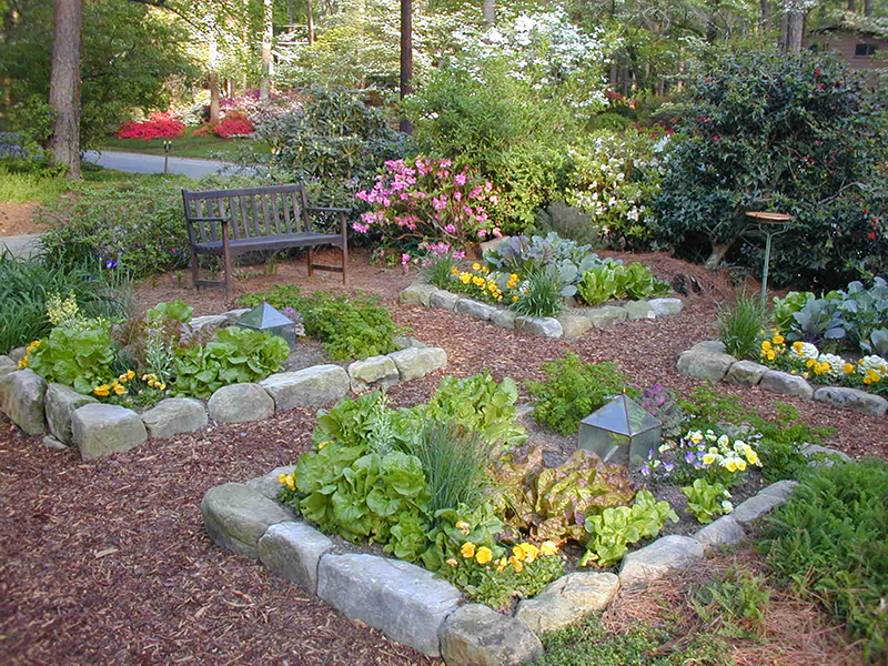 organic home vegetable garden - Home Vegetable Garden Design