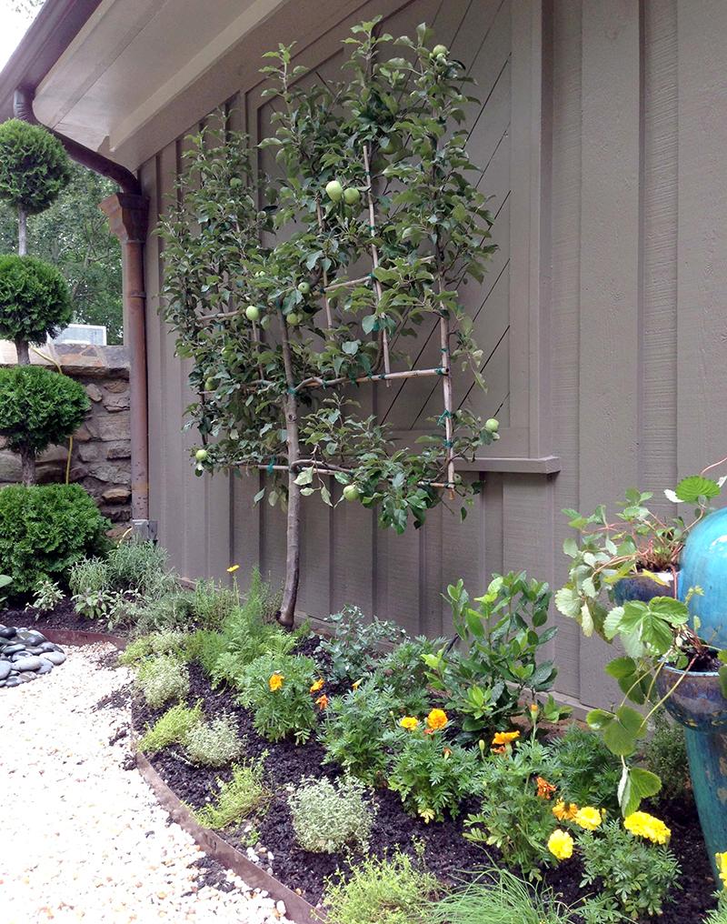 Arcoiris Design Gardening - organic herb garden