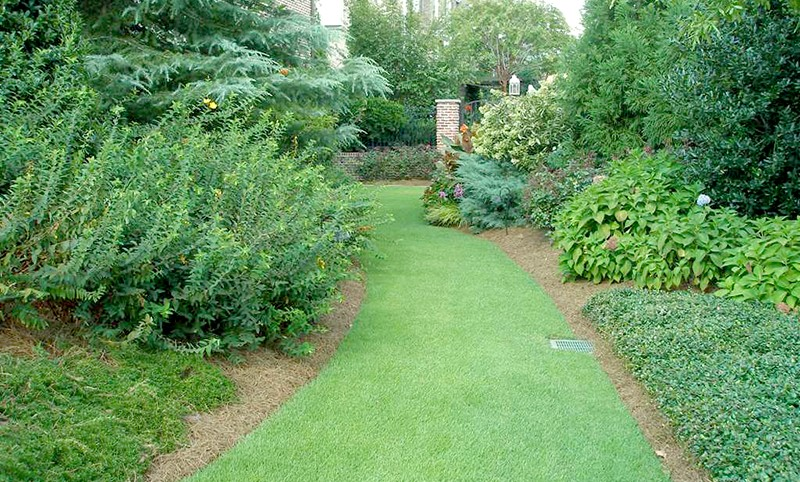 Is your lawn ready to withstand the little league team parties, sack races and barbeques that summer turf must endure? Photo courtesy of Simply Green Lawn Care Plus.