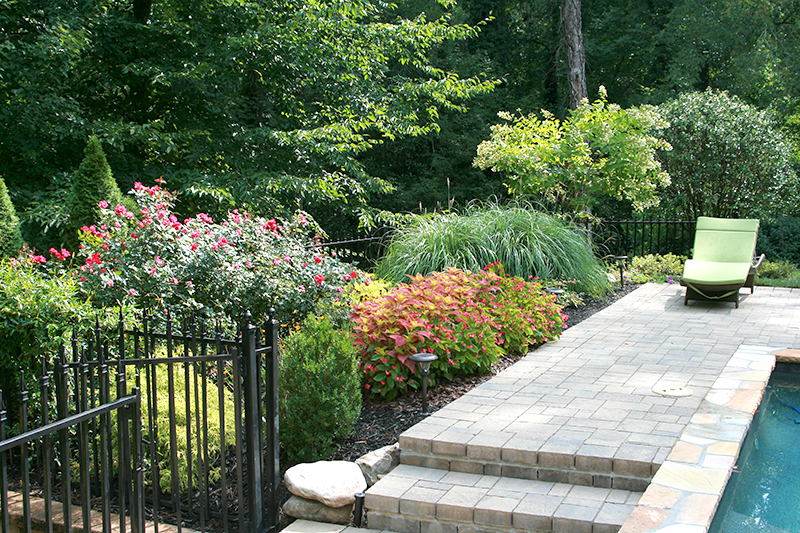When planning for a small space garden consider the environmental conditions, how the space will be used, irrigation needs and options, and make sure to choose plants that create interest. Photo courtesy of Solterra Landscape.