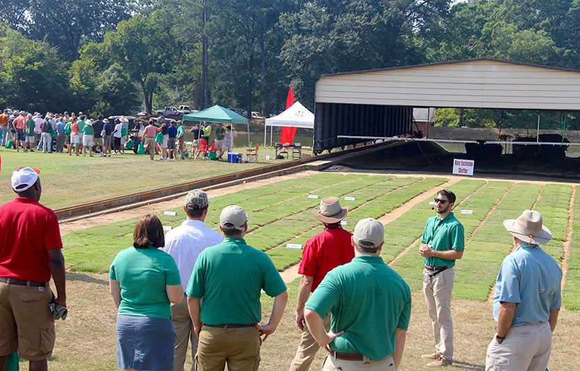 UGA Tufgrass Research Field Day