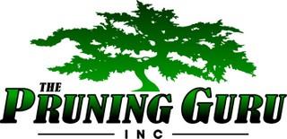 The Pruning Guru