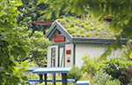 The Fockele Garden Company